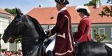 Den starokladrubského koně 2016. Národní hřebčín Kladruby nad Labem. Foto: © Vendula Šoltová pro www.KladrubskePolabi.cz - Jaroslav Smékal