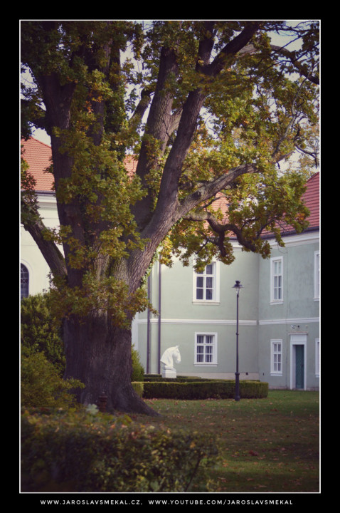 Podzim 2019, Kladrubské Polabí, www.KladrubskePolabi.cz